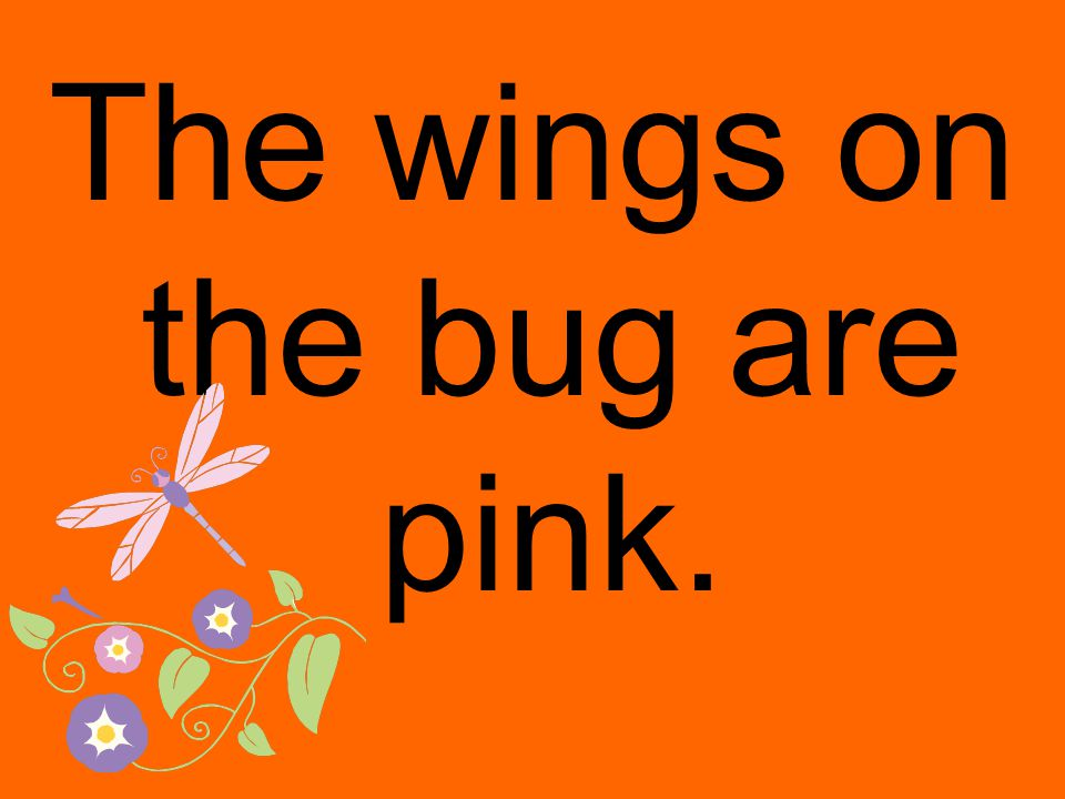 The wings on the bug are pink.