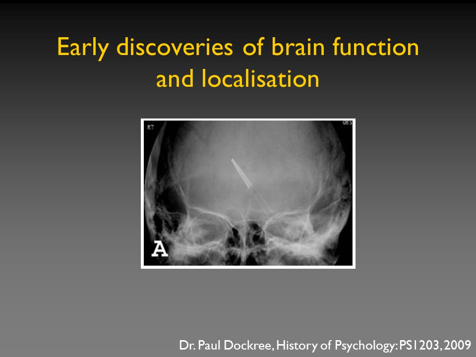 Early discoveries of brain function and localisation