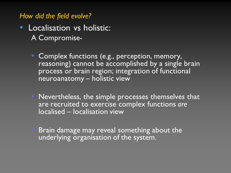 Localisation vs holistic: