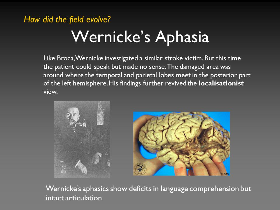 Wernicke's Aphasia How did the field evolve