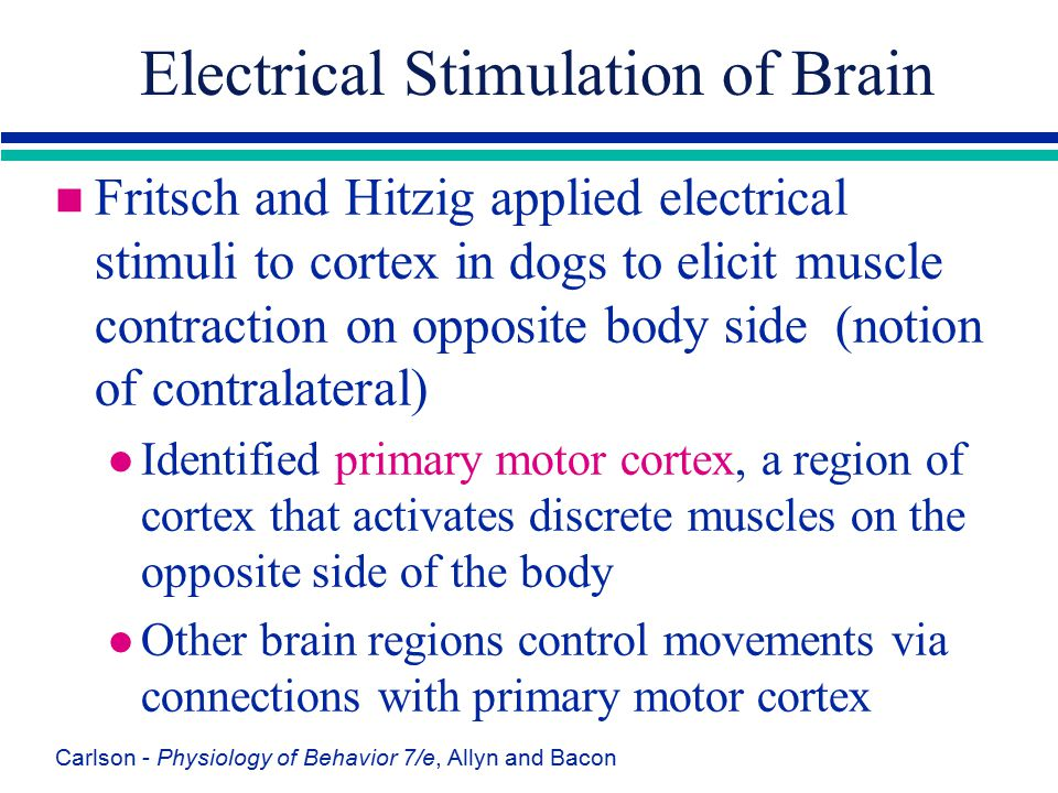 Electrical Stimulation of Brain