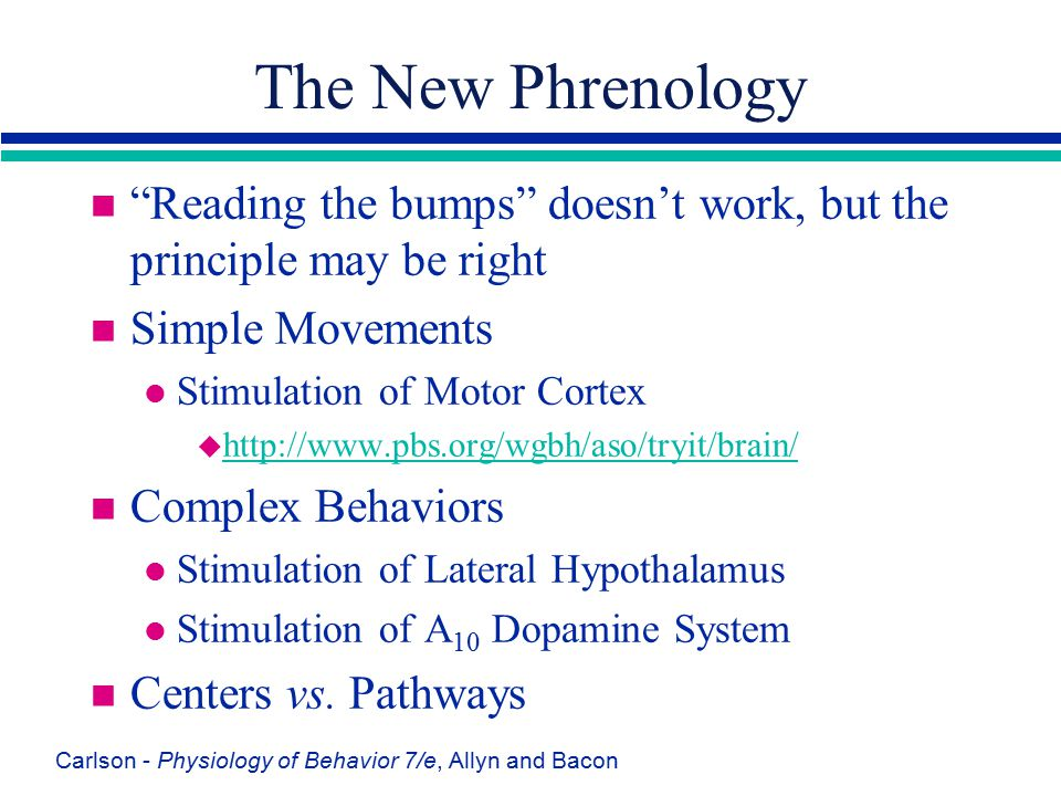 The New Phrenology Reading the bumps doesn't work, but the principle may be right. Simple Movements.