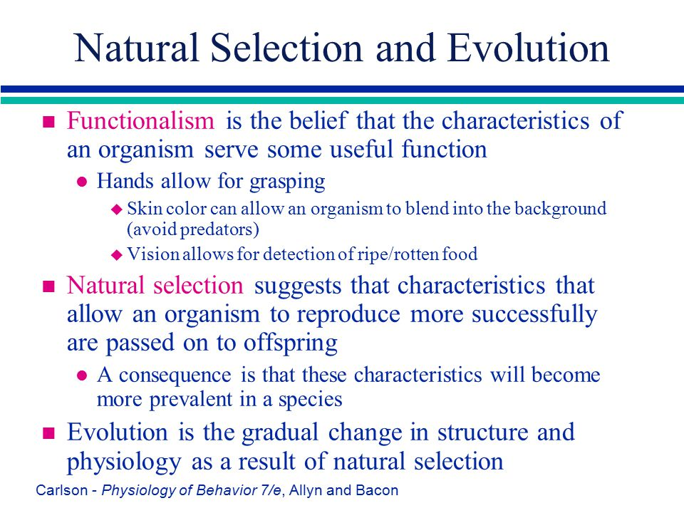 Natural Selection and Evolution