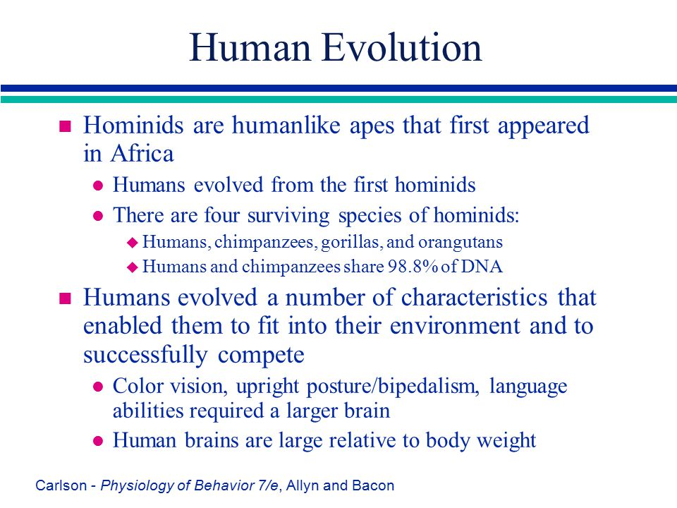 Human Evolution Hominids are humanlike apes that first appeared in Africa. Humans evolved from the first hominids.