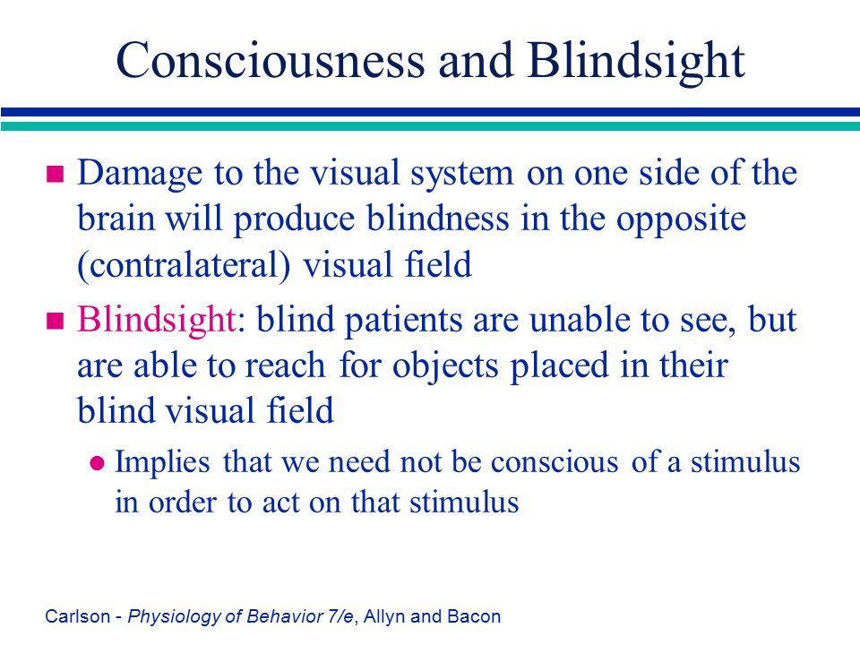 Consciousness and Blindsight