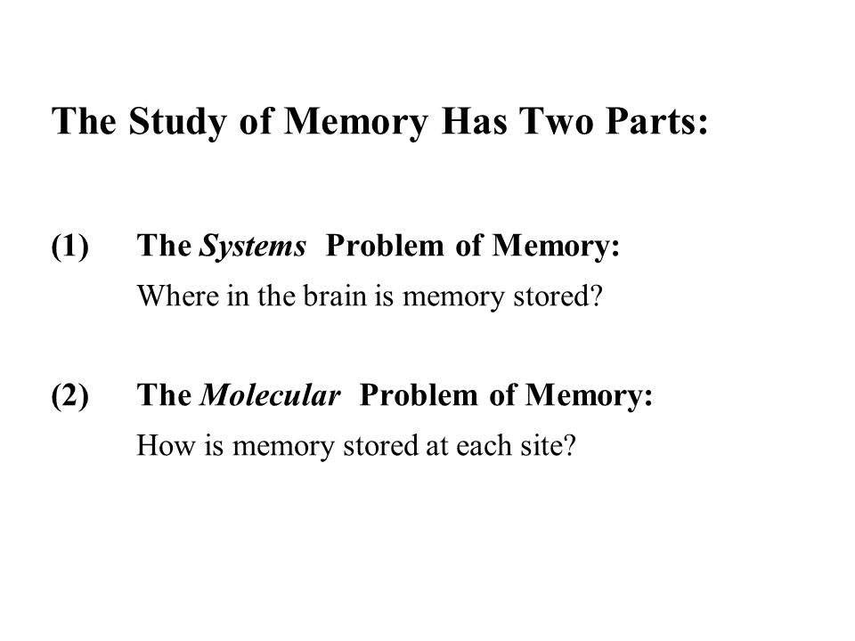 The Study of Memory Has Two Parts: