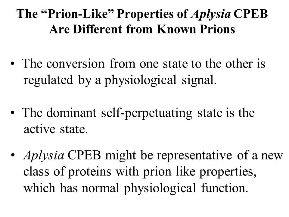 The Prion-Like Properties of Aplysia CPEB Are Different from Known Prions