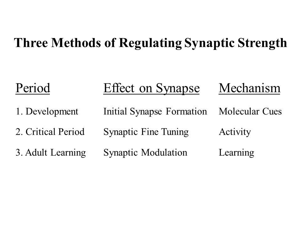 Three Methods of Regulating Synaptic Strength