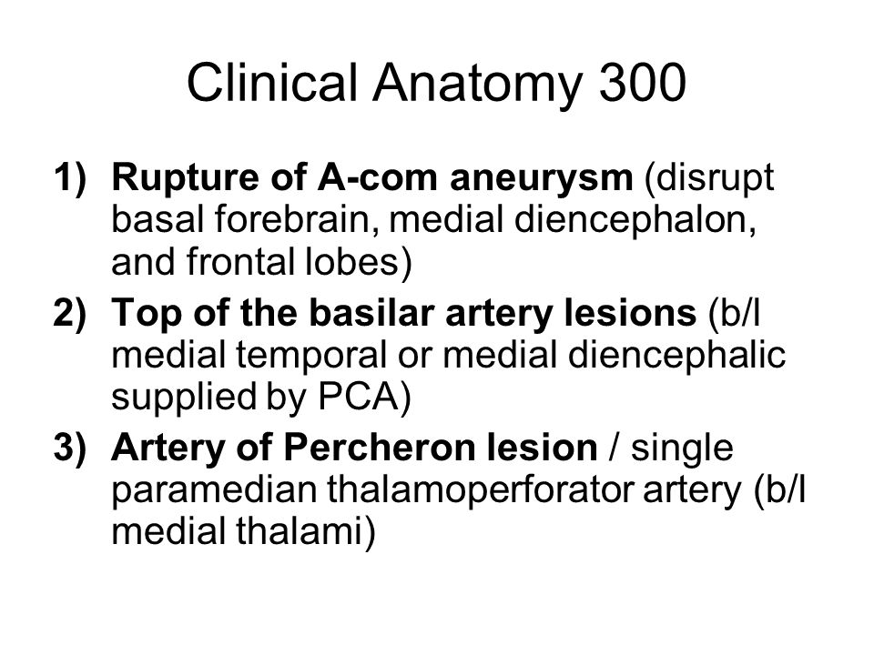 Clinical Anatomy 300 Rupture of A-com aneurysm (disrupt basal forebrain, medial diencephalon, and frontal lobes)