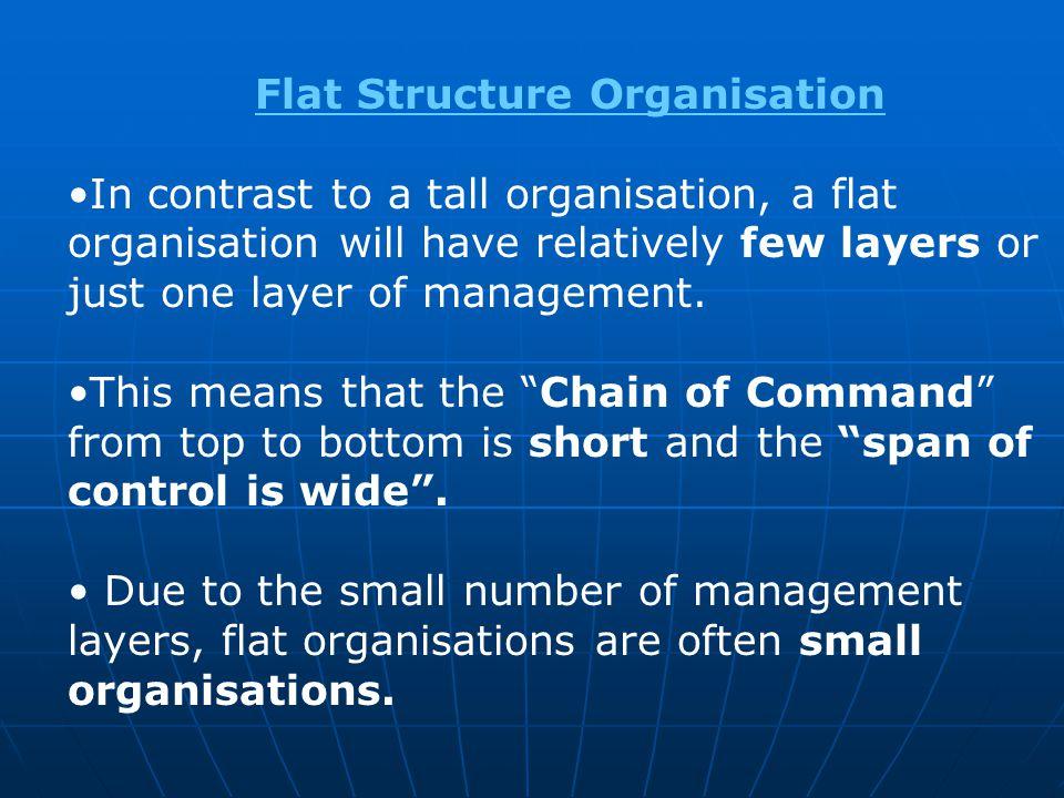 Flat Structure Organisation