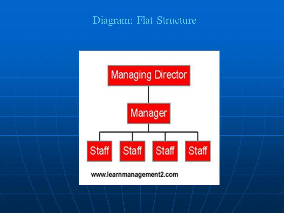 Diagram: Flat Structure