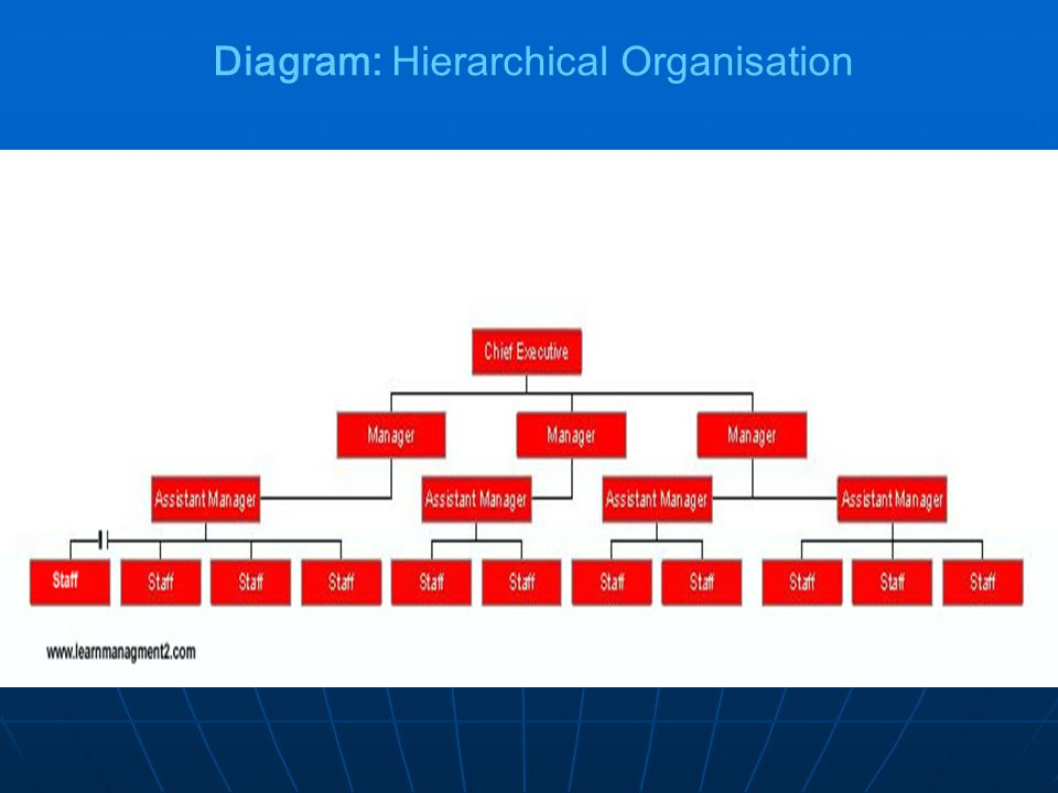 Diagram: Hierarchical Organisation