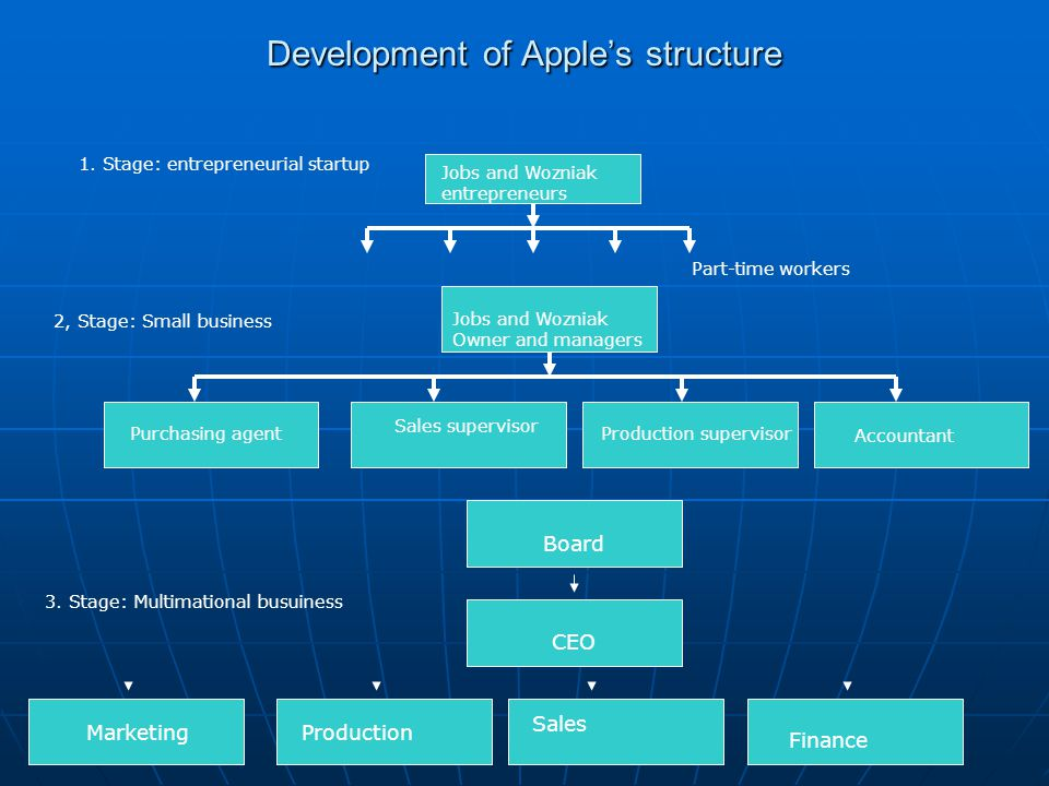 Development of Apple's structure