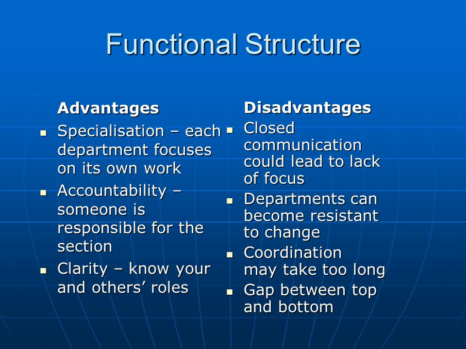 Functional Structure Advantages Disadvantages