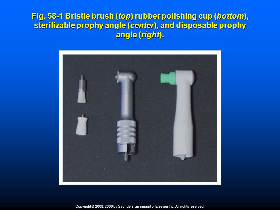 Fig. 58-1 Bristle brush (top) rubber polishing cup (bottom), sterilizable prophy angle (center), and disposable prophy angle (right).