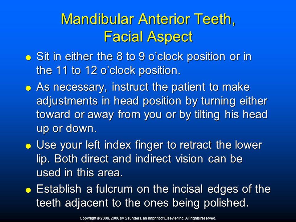 Mandibular Anterior Teeth, Facial Aspect