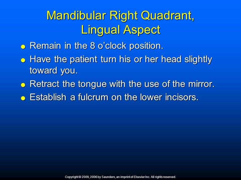 Mandibular Right Quadrant, Lingual Aspect