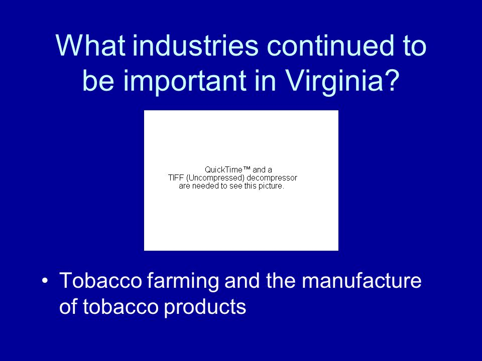 What industries continued to be important in Virginia