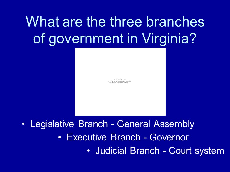 What are the three branches of government in Virginia