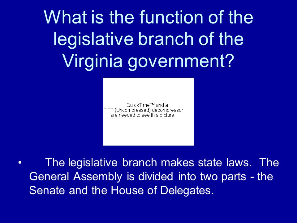 What is the function of the legislative branch of the Virginia government