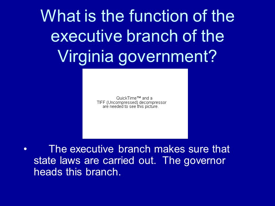What is the function of the executive branch of the Virginia government