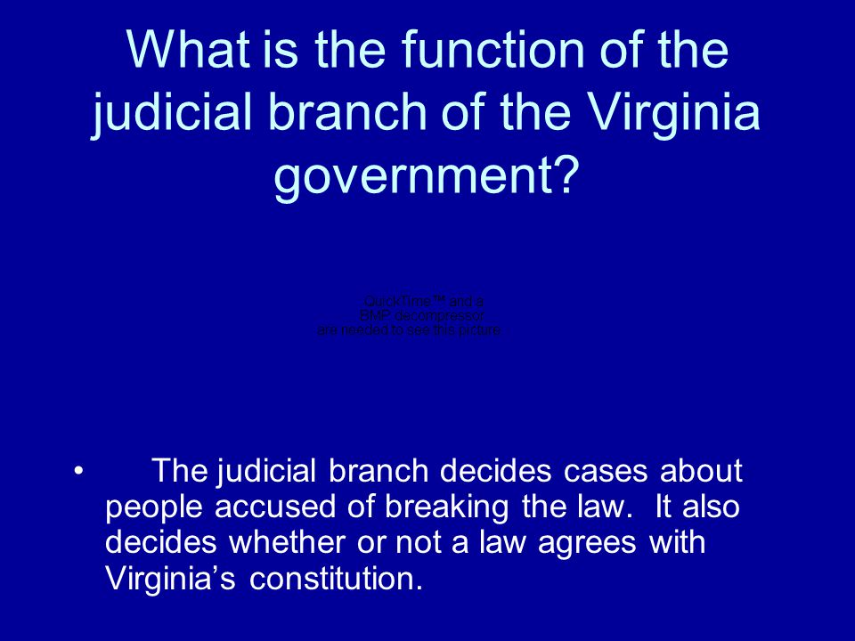 What is the function of the judicial branch of the Virginia government