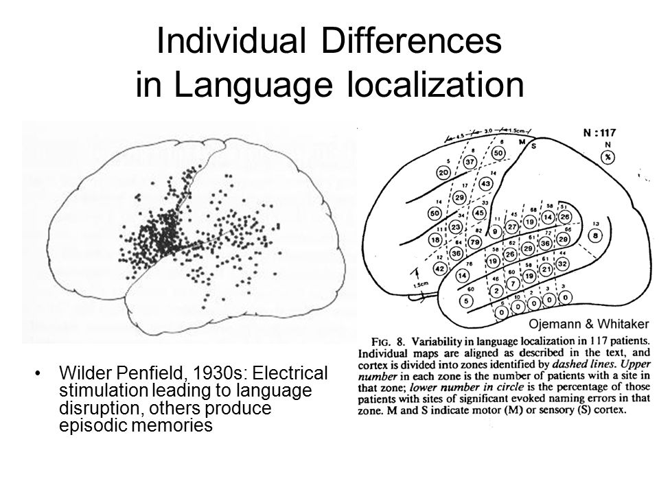 Individual Differences in Language localization