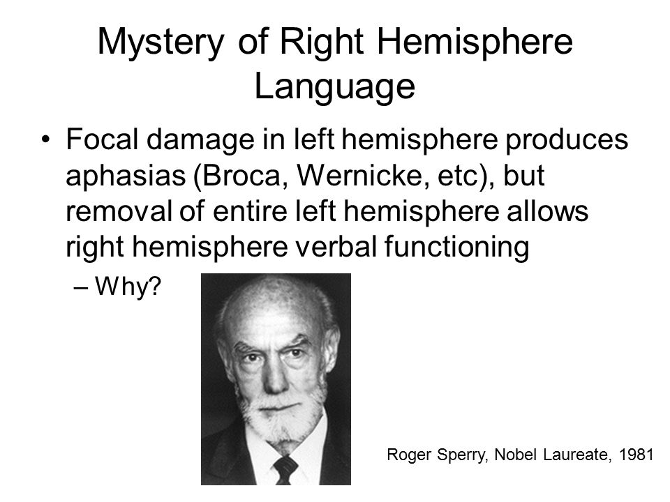 Mystery of Right Hemisphere Language