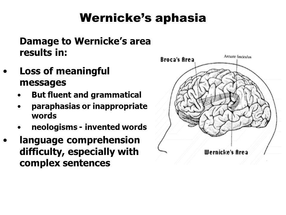 Wernicke's aphasia Damage to Wernicke's area results in: