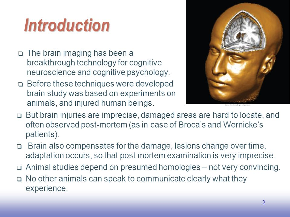 Introduction The brain imaging has been a breakthrough technology for cognitive neuroscience and cognitive psychology.