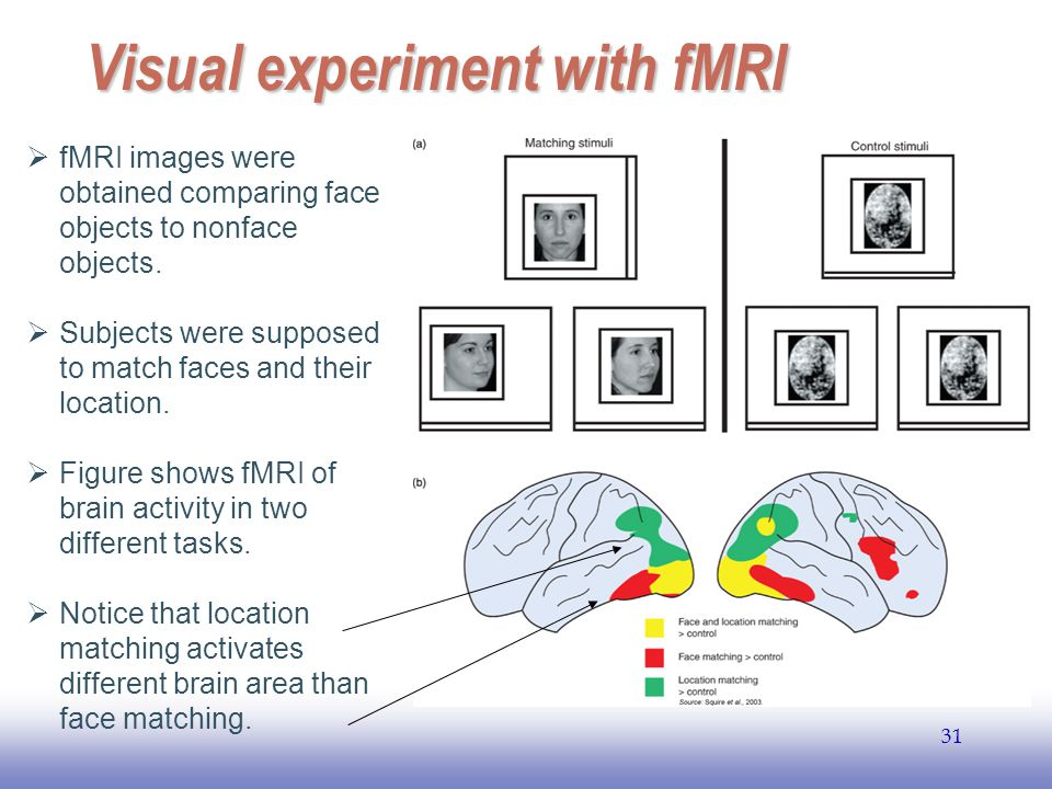 Visual experiment with fMRI