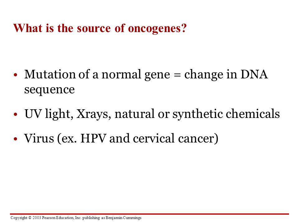 What is the source of oncogenes