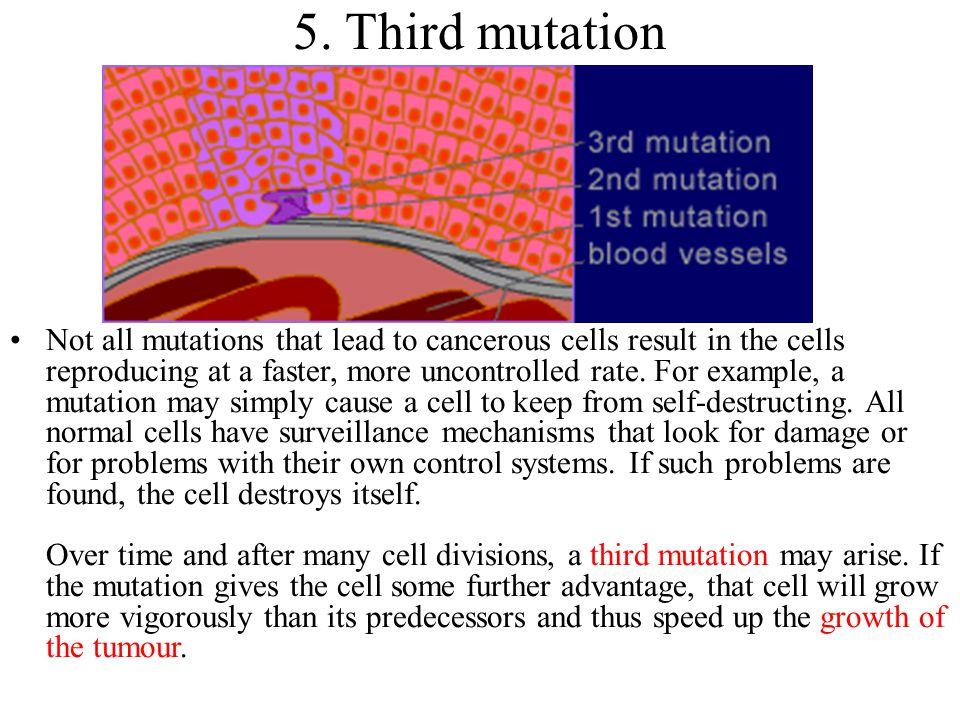 5. Third mutation