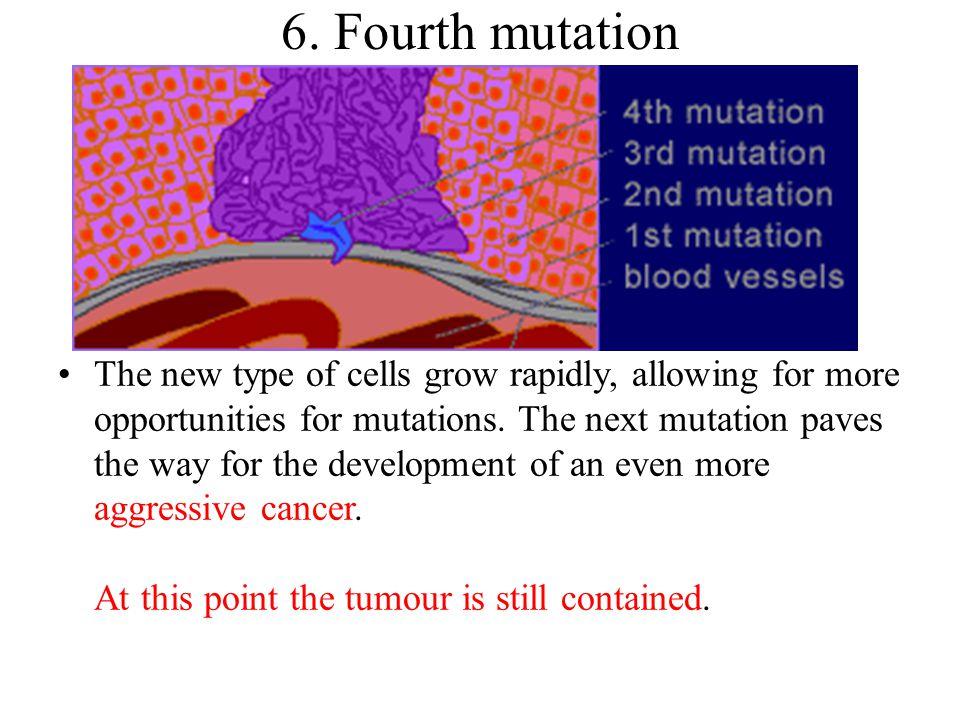 6. Fourth mutation