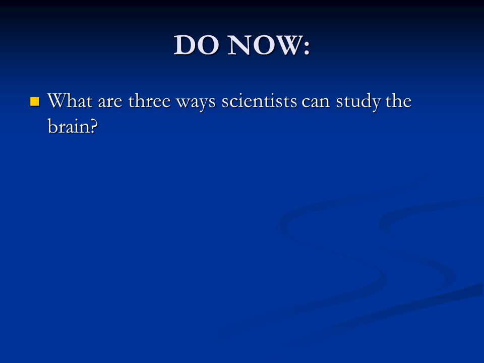 DO NOW: What are three ways scientists can study the brain