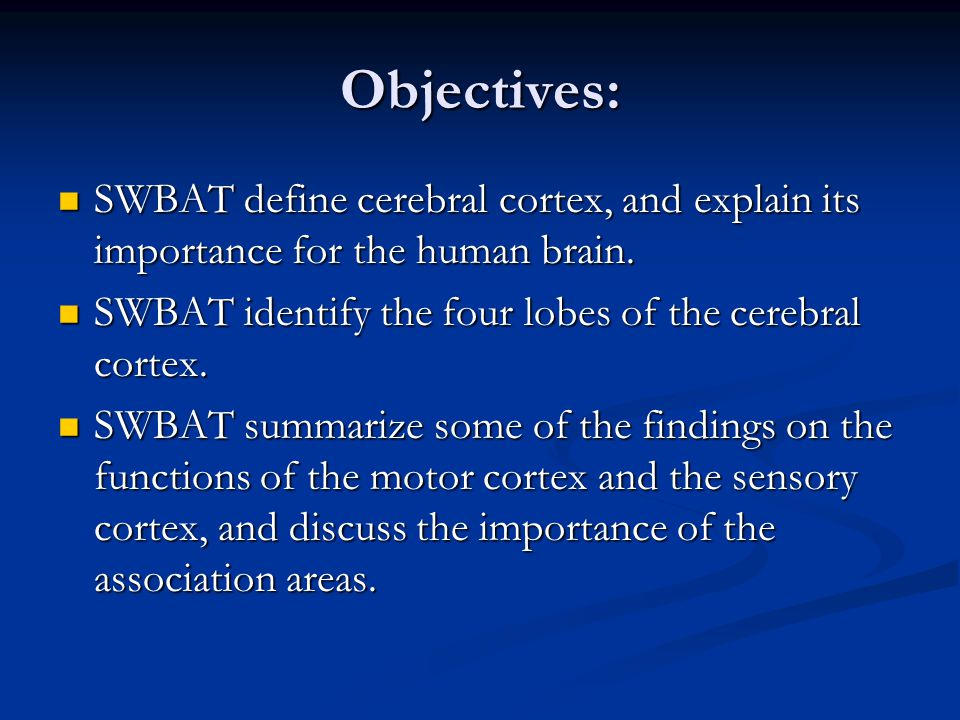 Objectives: SWBAT define cerebral cortex, and explain its importance for the human brain. SWBAT identify the four lobes of the cerebral cortex.