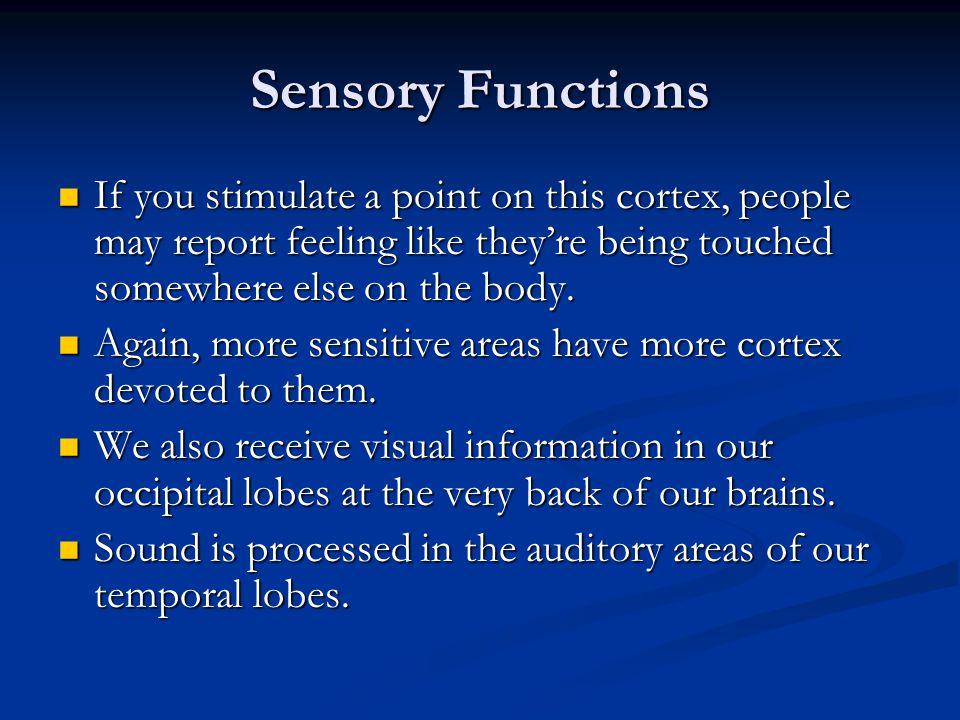 Sensory Functions If you stimulate a point on this cortex, people may report feeling like they're being touched somewhere else on the body.
