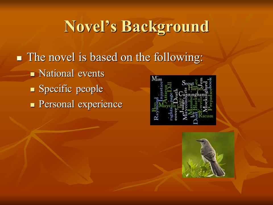 Novel's Background The novel is based on the following: