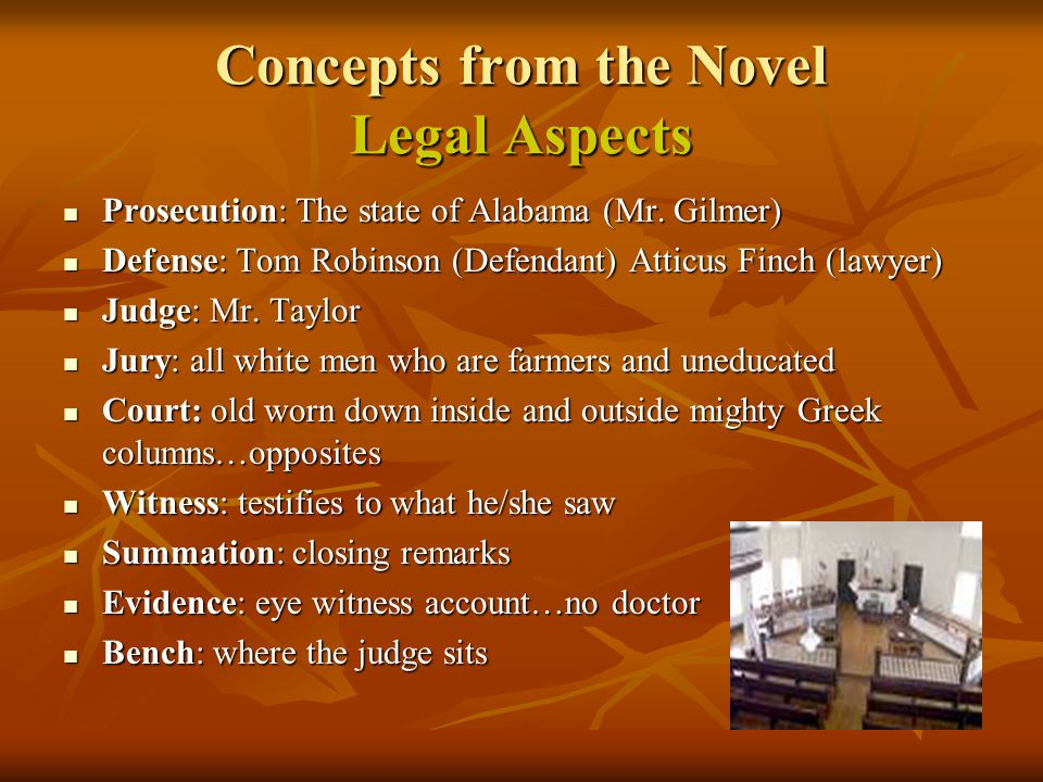 Concepts from the Novel Legal Aspects
