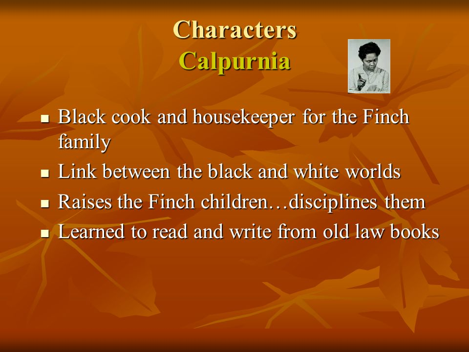 Characters Calpurnia Black cook and housekeeper for the Finch family