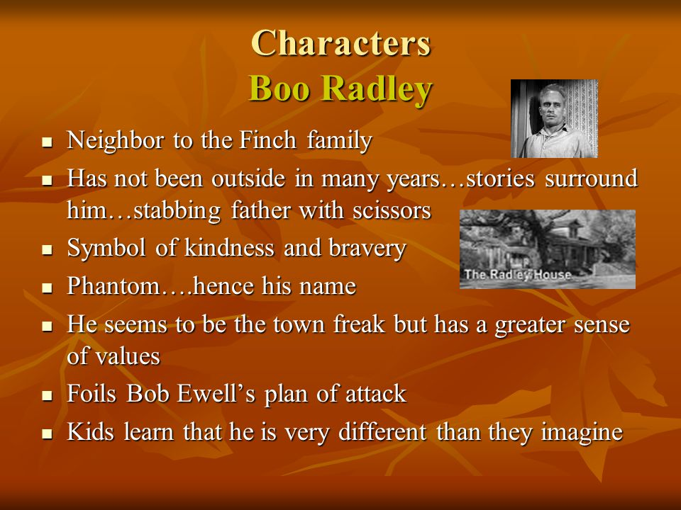 Characters Boo Radley Neighbor to the Finch family