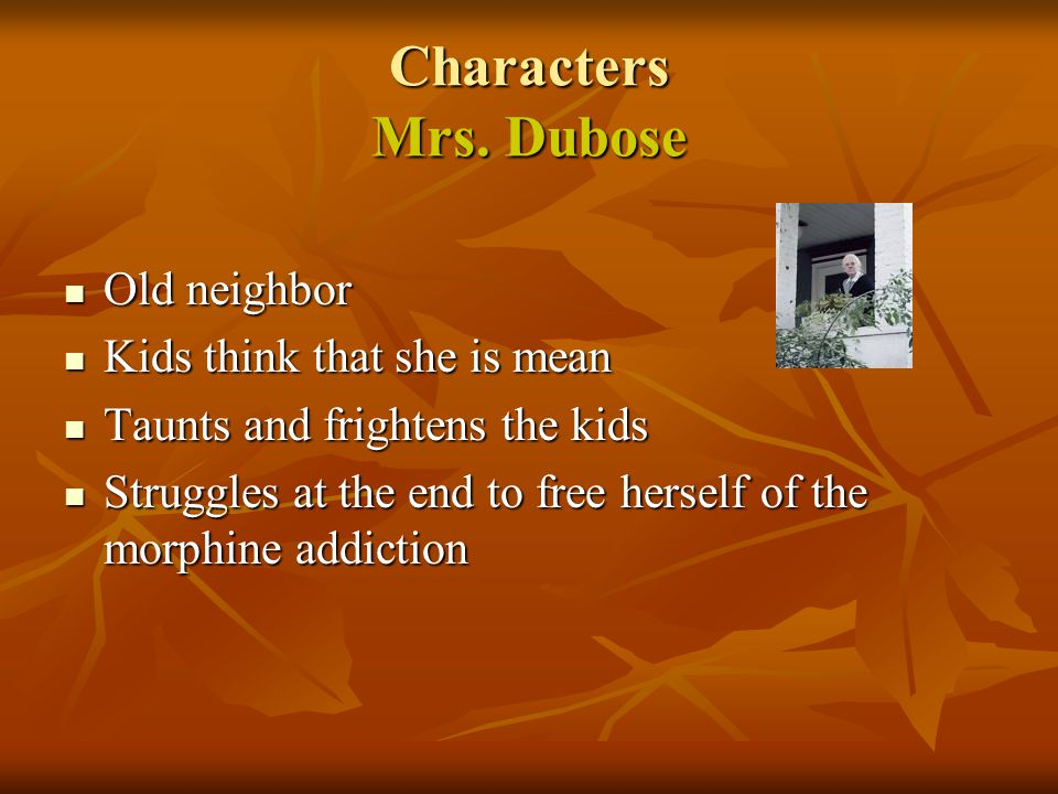 Characters Mrs. Dubose Old neighbor Kids think that she is mean