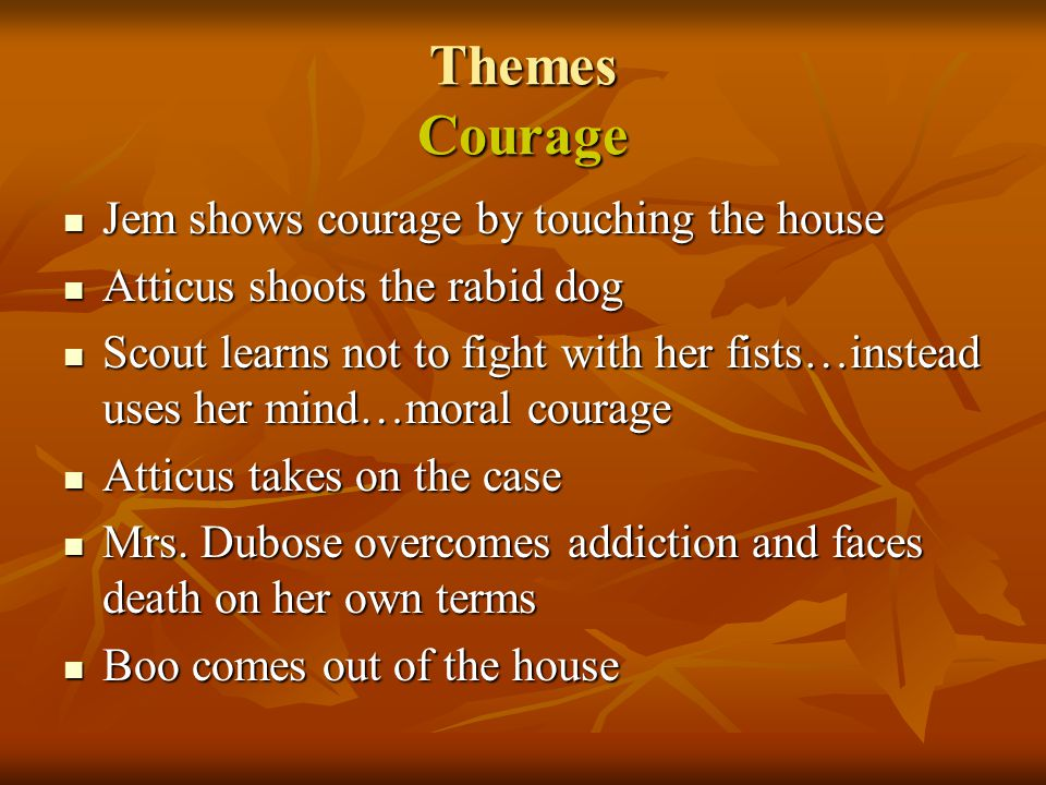 Themes Courage Jem shows courage by touching the house