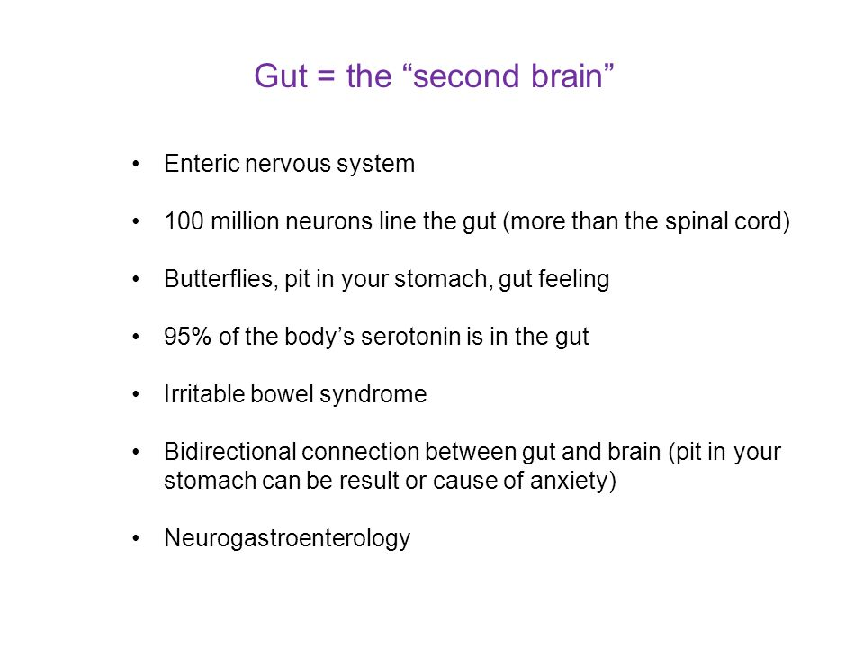 Gut = the second brain