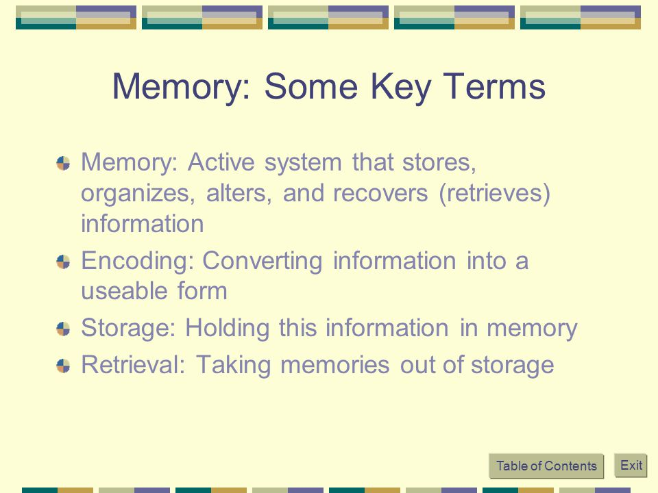 Memory: Some Key Terms Memory: Active system that stores, organizes, alters, and recovers (retrieves) information.