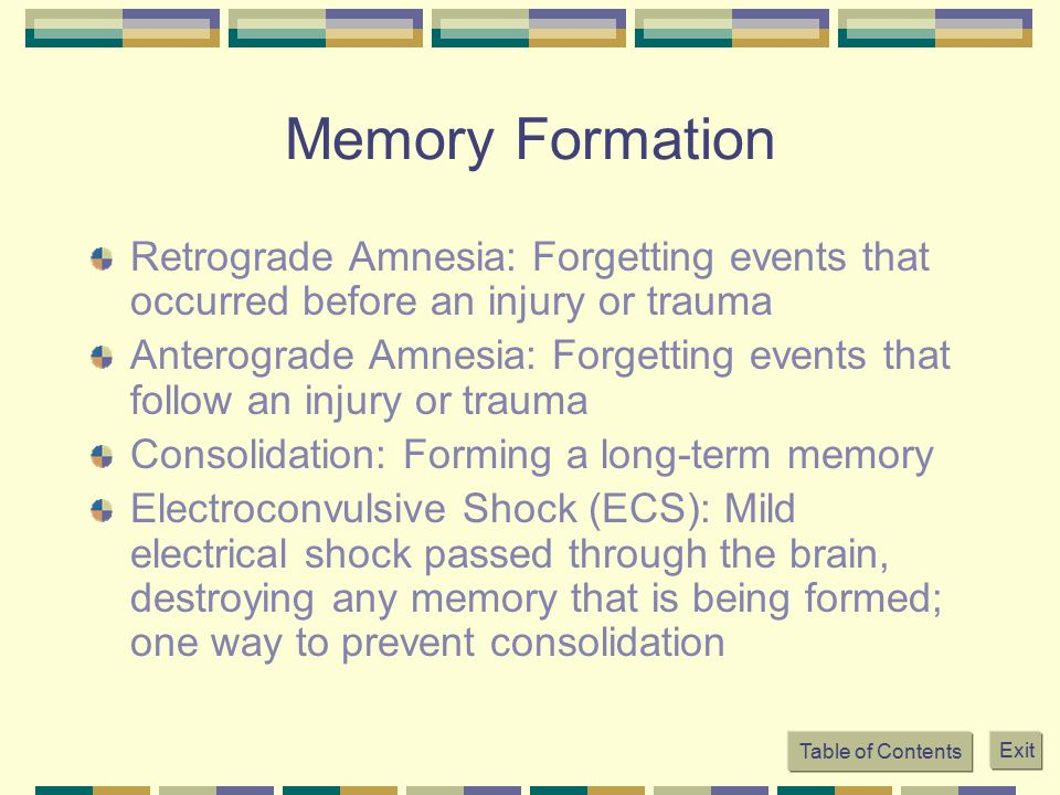 Memory Formation Retrograde Amnesia: Forgetting events that occurred before an injury or trauma.