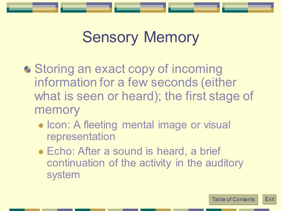 an explanation of the 3 stages of memory The most common form of dementia, alzheimer's disease affects specific parts of the brain that control language, memory and thought incurable and irreversible, alzheimer's progresses through several stages, from mild to severe, and is the sixth leading cause of death in the united states.