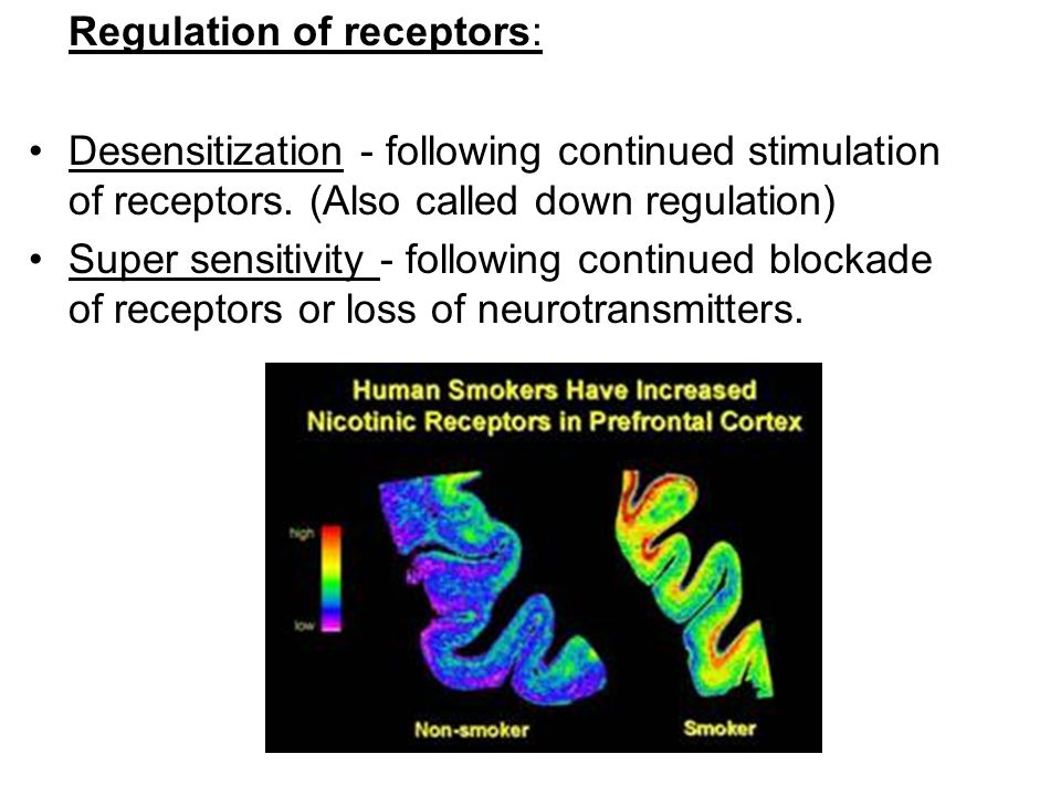 Regulation of receptors: