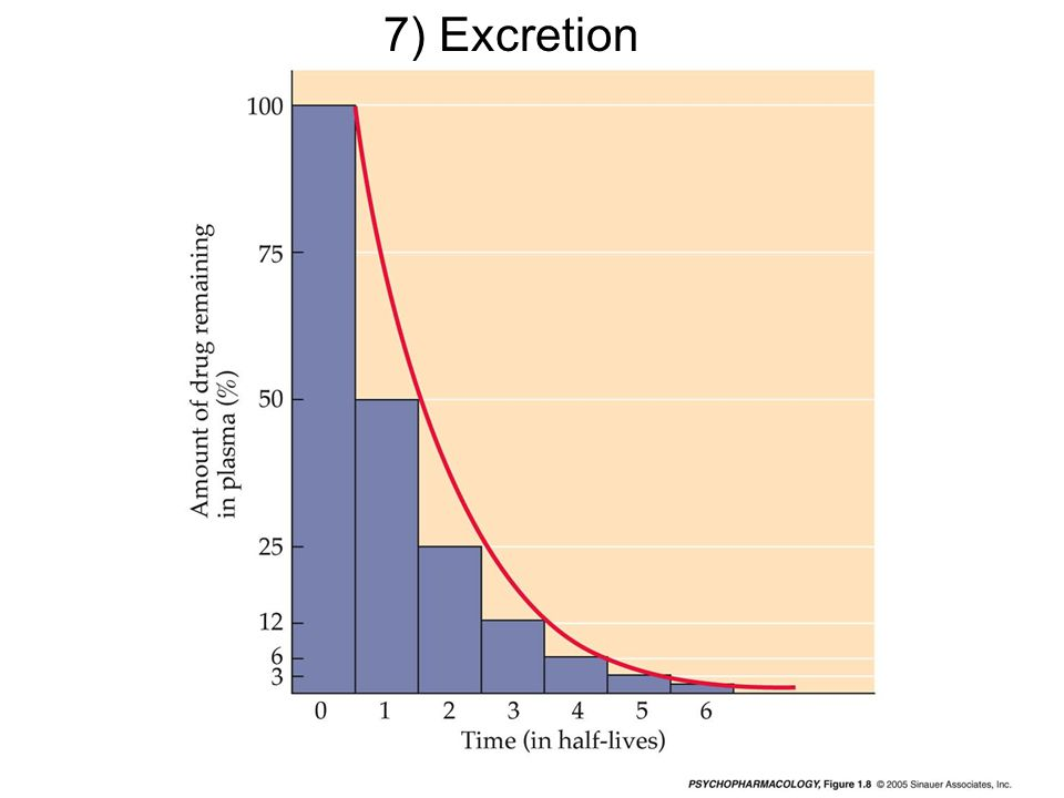 7) Excretion mq-fig-01-08-0.jpg
