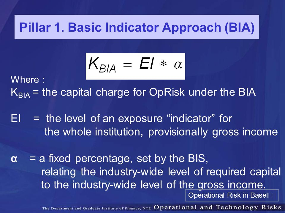 Pillar 1. Basic Indicator Approach (BIA)